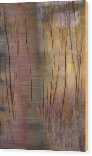 Wood Print featuring the photograph Winter Willows Abstract by Deborah Hughes