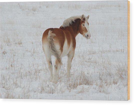 Winter Winds Wood Print