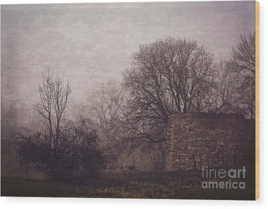 Winter Without Snow Wood Print