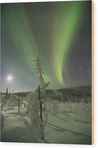 Winter Wonderland Aurora Wood Print