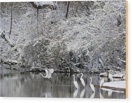 Winter Wonderland Wood Print