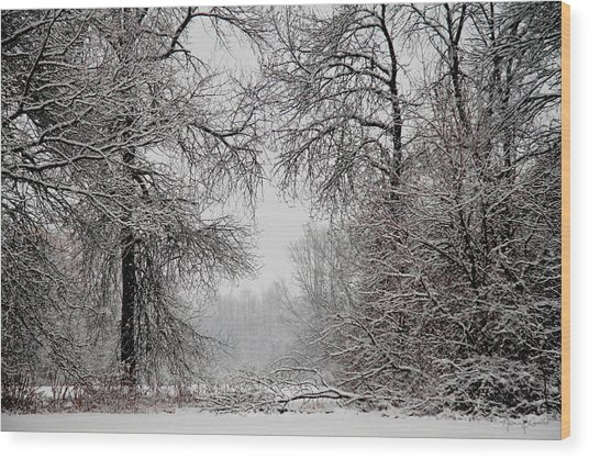 Winter Wonderland II Wood Print