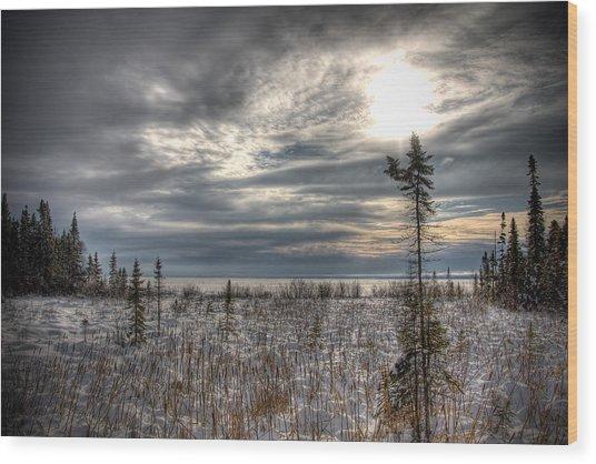 Winter Wonderland Wood Print by Michel Filion