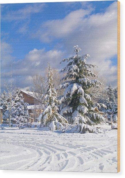 Winter Wonderland Wood Print by Wilbur Young