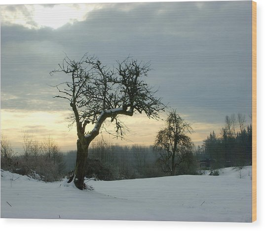Wintergloom Wood Print