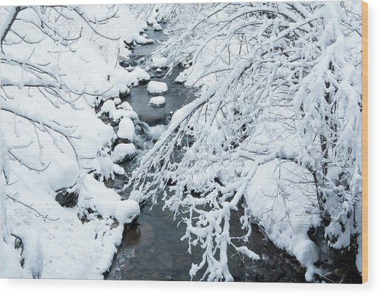 Winters Creek- Wood Print