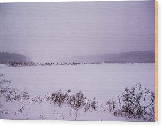 Winter's Desolation Wood Print