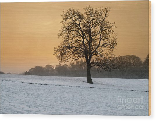 Winters Morning Wood Print