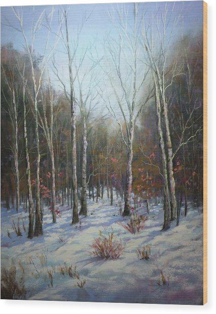 Winterscape Wood Print by Paula Ann Ford