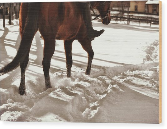 Wintertime Hack Wood Print by JAMART Photography