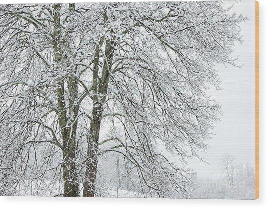 Wintertime In West Virginia Wood Print