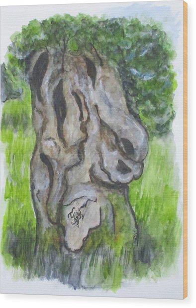 Wisdom Olive Tree Wood Print