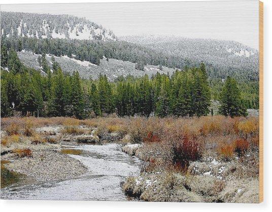 Wise River Montana Wood Print