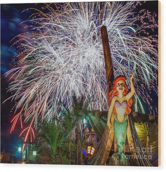 Wishes Over Prince Eric's Castle Wood Print
