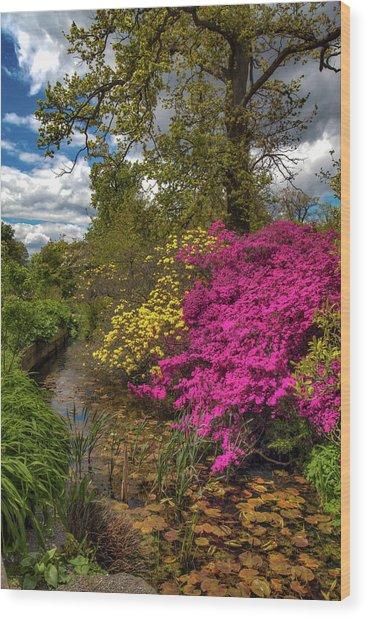 Wisley Garden Wood Print