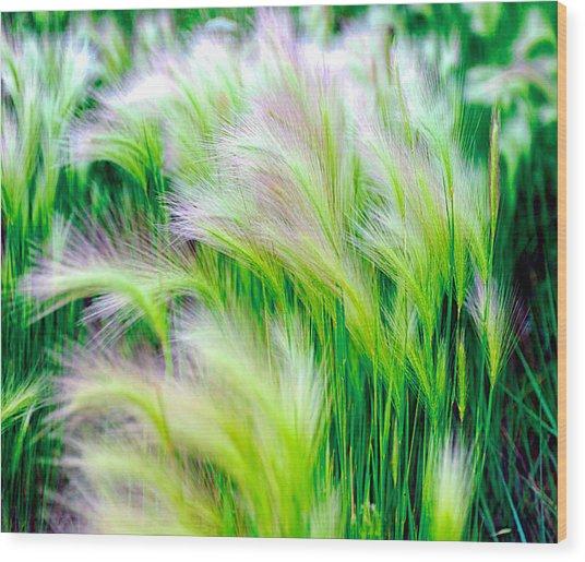 Wispy Green Wood Print