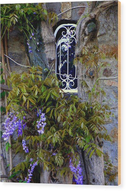 Wisteria Window Wood Print
