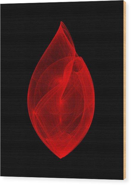 Within Shell IIi Wood Print by Robert Krawczyk