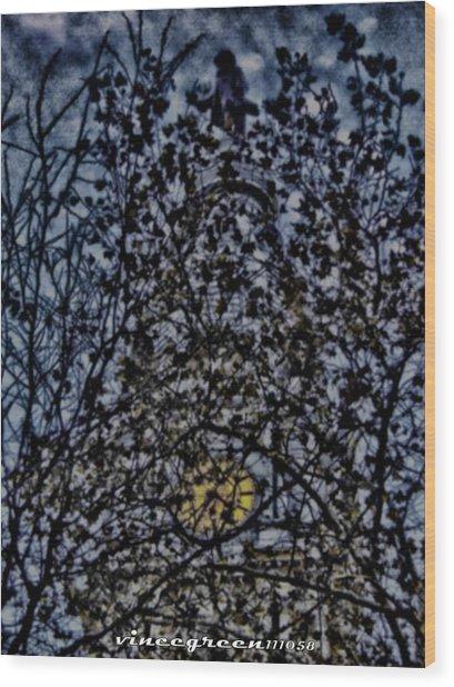 Wm Penn's Woods Wood Print