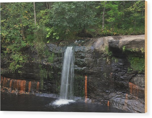 Wolf Creek Falls Wood Print by John Ricker