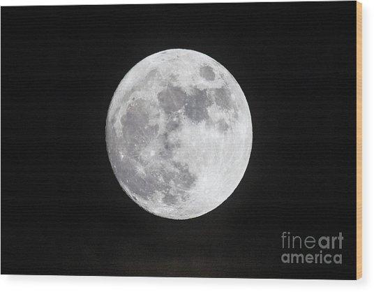 Wolf Moon Wood Print