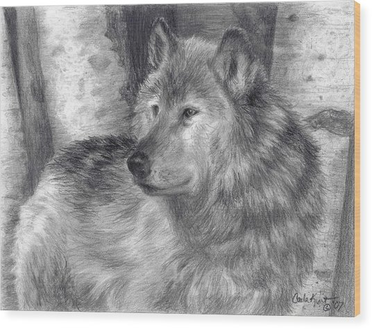 Wolf Number Six Wood Print