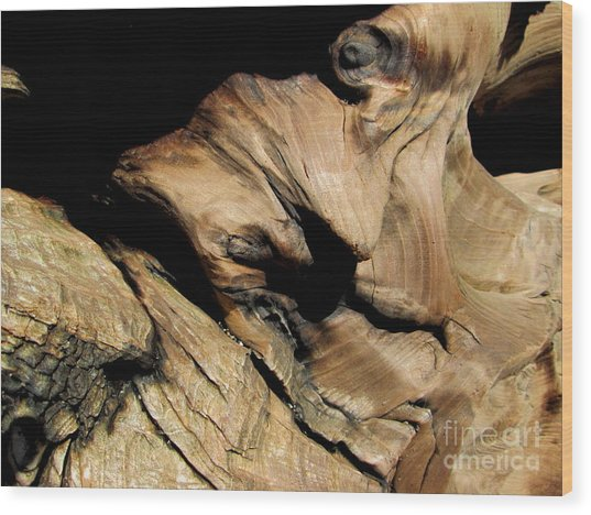 Old Woman Of The Woods Wood Print