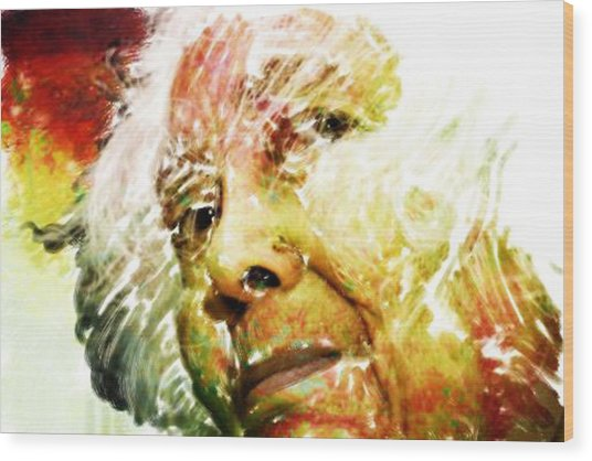 Woman With White Hair Wood Print by James VerDoorn