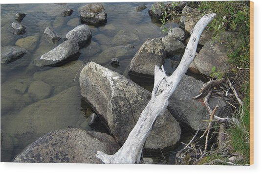 Wood And Rocks In Water Wood Print