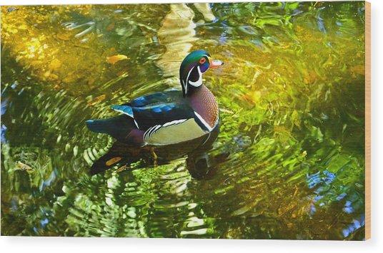 Wood Duck In Lights Wood Print