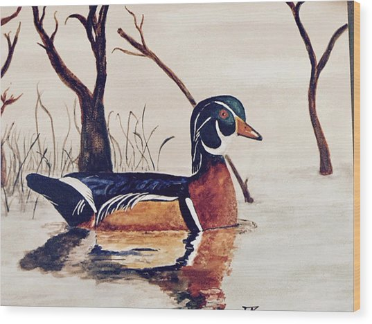 Wood Duck No. 2 Wood Print
