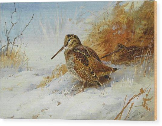Woodcock In Winter By Thorburn Wood Print