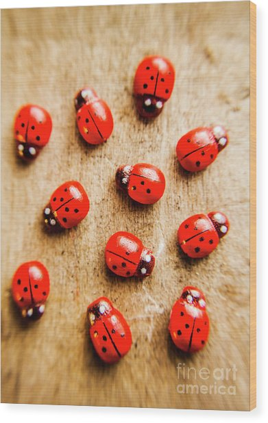 Wooden Ladybugs Wood Print