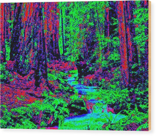 Woodland Forest D3 Wood Print by Modified Image