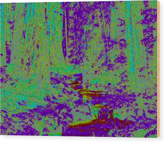 Woodland Forest D4 Wood Print by Modified Image
