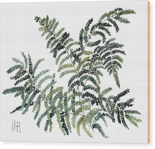 Woodland Maiden Fern Wood Print