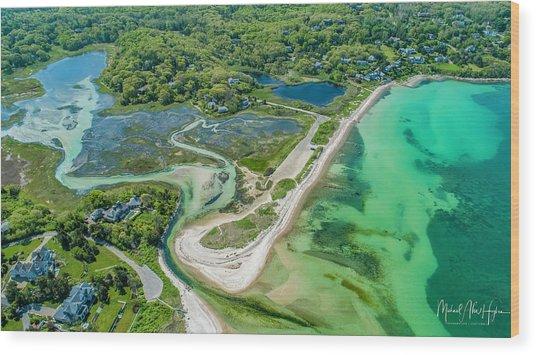 Woodneck Beach At 400 Feet Wood Print