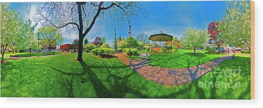 Woodstock Square Historic District 360 Spring Wood Print