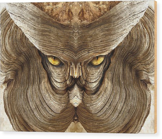 Woody 88a Wood Print