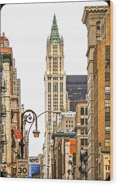 Woolworth Building Iv Wood Print