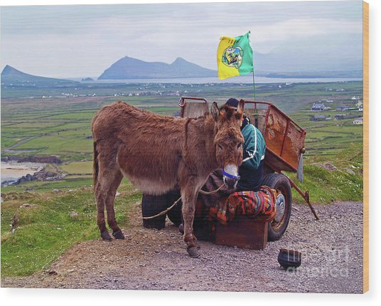 Would You Like A Ride In Ireland Wood Print