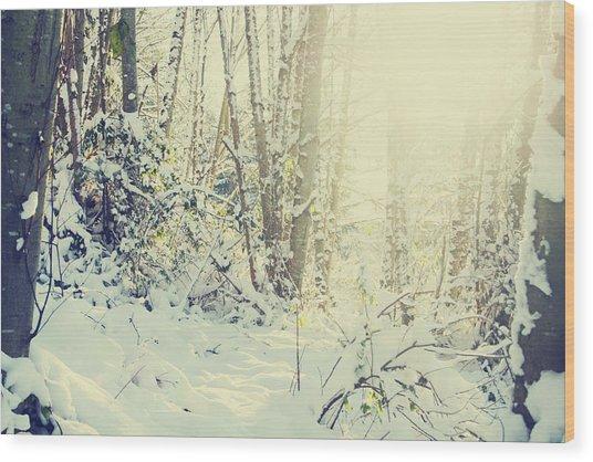Wunderkind Wood Print by Kerry Langel