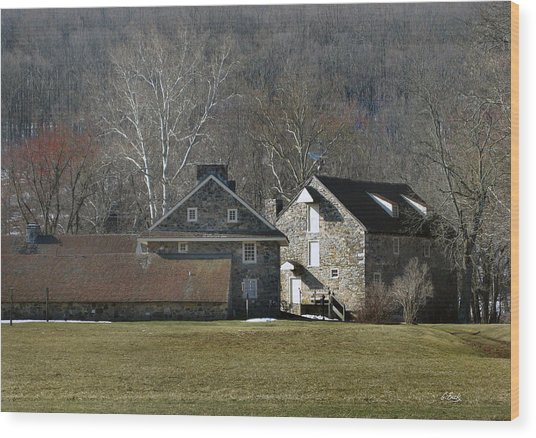 Wyeth Home In Spring Wood Print