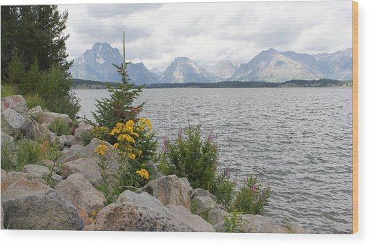 Wyoming Mountains Wood Print
