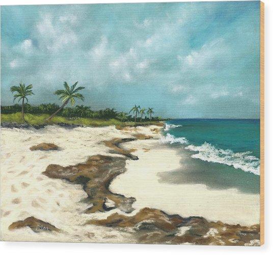 Wood Print featuring the painting Xcaret - Mexico - Beach by Anastasiya Malakhova