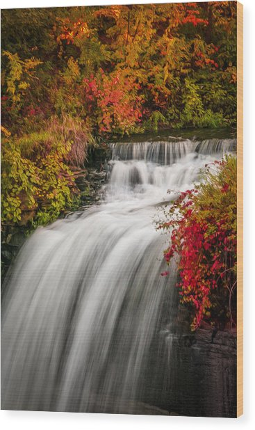 Fall At Minnehaha Falls Wood Print