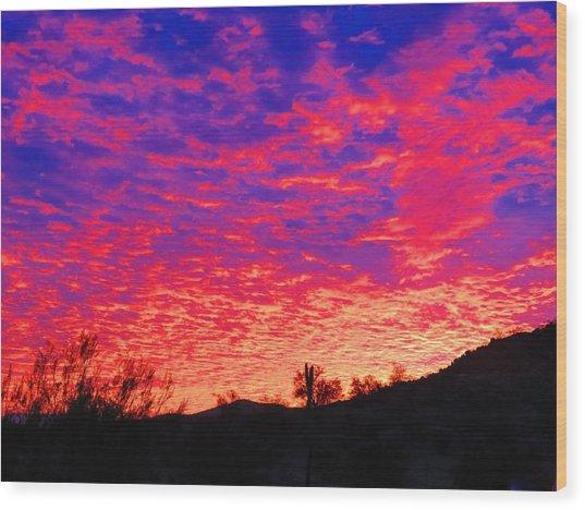 Y Cactus Sunset 1 Wood Print