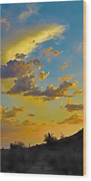 Y Cactus Sunset 10 Wood Print