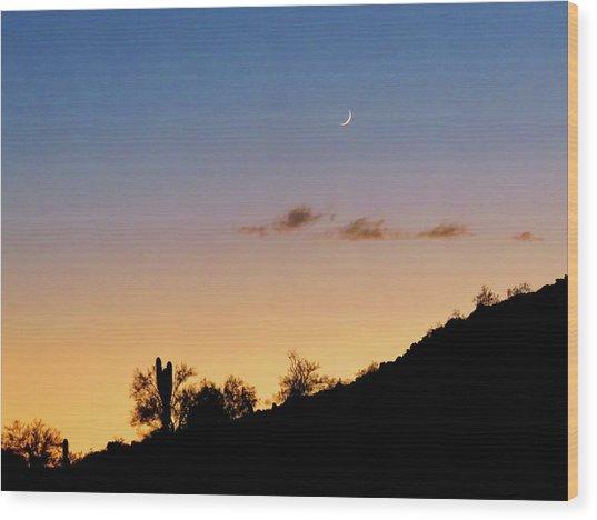 Y Cactus Sunset Moonrise Wood Print