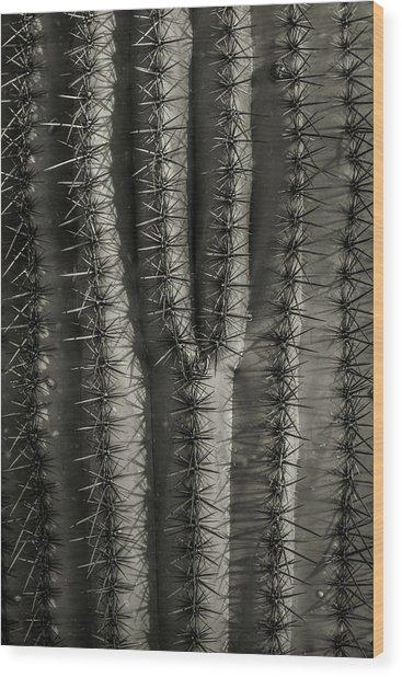 Y Wood Print by Joseph Smith